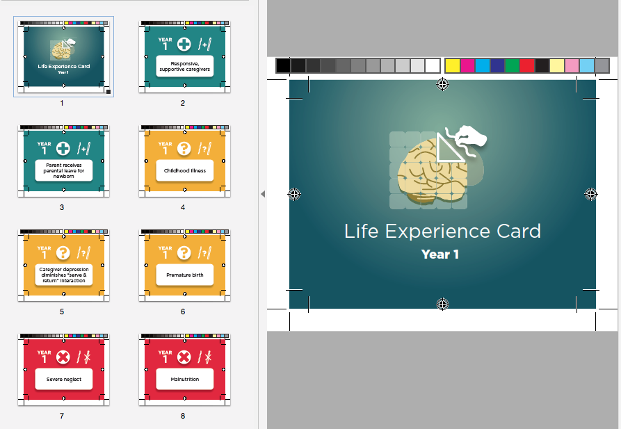 Life Experience Cards - Year 1